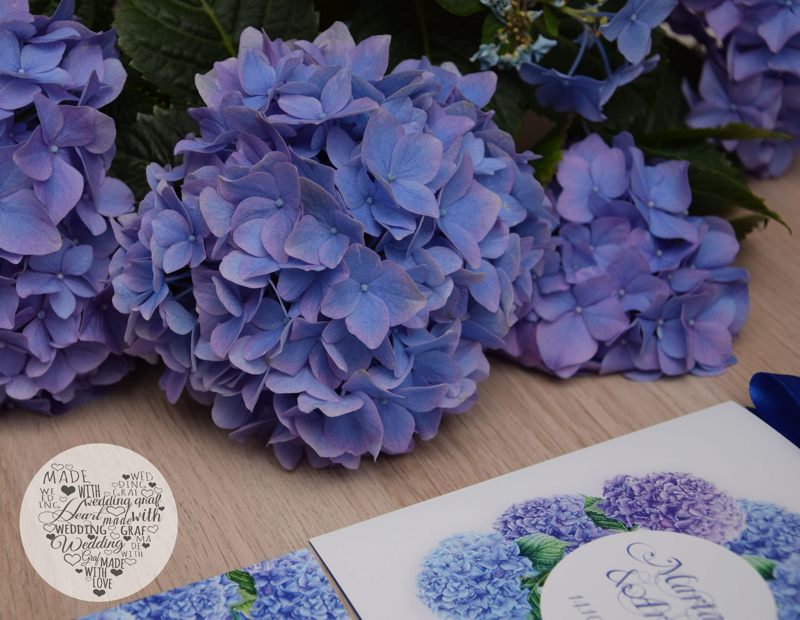 Niebieskie hortensje 03